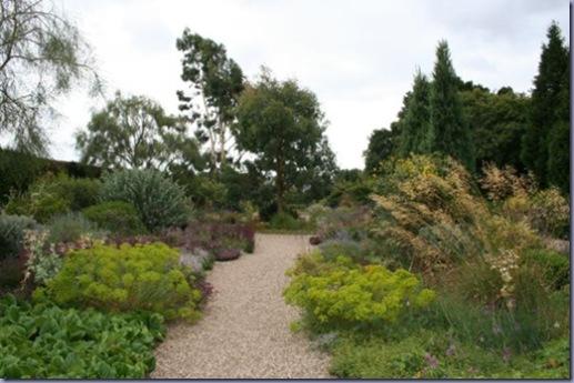 Beth Chatto's Garden 013