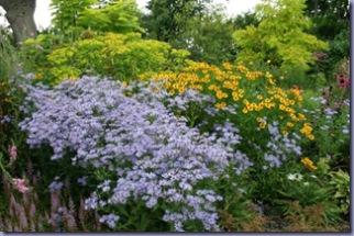 Beth Chatto's Garden 031